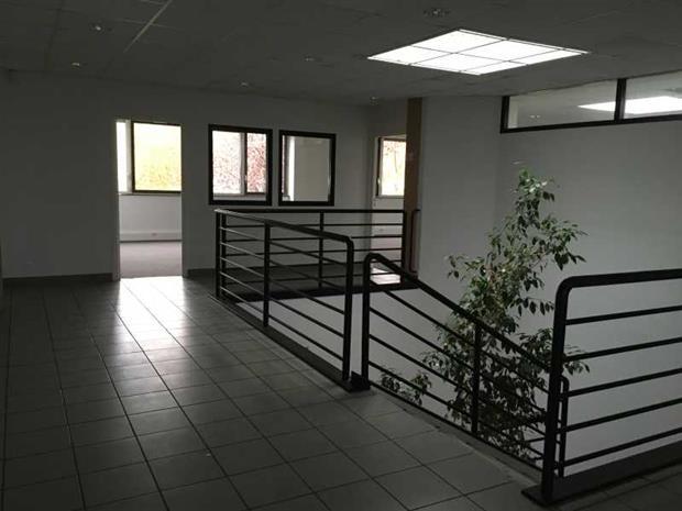 Bureau Vente/Location 31520 RAMONVILLE ST AGNE